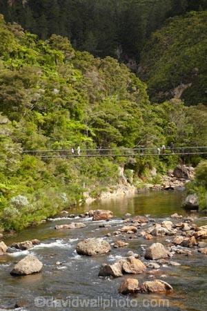bridge;bridges;Coromandel;Coromandel-Peninsula;foot-bridge;foot-bridges;footbridge;footbridges;hike;hikes;hiking;hiking-track;hiking-tracks;Karangahake-Gorge;Karangahake-Gorge-Historic-Walkway;Karangahake-Gorge-Track;Karangahake-Gorge-Walk;Karangahake-Gorge-Walkway;N.I.;N.Z.;New-Zealand;NI;North-Is;North-Is.;North-Island;NZ;Paeroa;pedestrian-bridge;pedestrian-bridges;river;rivers;rope-bridge;rope-bridges;suspension-bridge;suspension-bridges;swing-bridge;swing-bridges;Swingbridge;track;tracks;tramp;tramping;tramps;Waikato;Waitawheta-River;walk;walking;walking-track;walking-tracks;walks;wire-bridge;wire-bridges