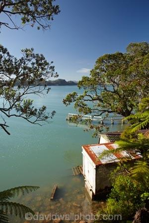boat-house;boat-houses;boat-shed;boat-sheds;boat_house;boat_houses;boat_shed;boat_sheds;boathouse;boathouses;boatshed;boatsheds;coast;coastal;coastline;coastlines;coasts;Coromandel;Coromandel-Peninsula;flower;flowers;foreshore;metrosideros-excelsa;N.I.;N.Z.;New-Zealand;NI;North-Is;North-Is.;North-Island;NZ;Oamaru-Bay;ocean;Old-Boat-Shed;plant;plants;pohutakawa;pohutakawas;pohutukawa;pohutukawa-flower;pohutukawa-flowers;pohutukawa-tree;pohutukawa-trees;pohutukawas;sea;shore;shoreline;shorelines;shores;tree;trees;Waikato;water
