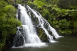 brook;calm;calmness;cascade;cascades;Coromandel;Coromandel-Peninsula;creek;creeks;falls;fern;forest;green;Karangahake-Gorge;N.I.;N.Z.;native-bush;natural;nature;New-Zealand;NI;North-Is;North-Is.;North-Island;NZ;Owharoa-Falls;Paeroa;scene;scenic;stream;streams;Waikato;water;water-fall;water-falls;waterfall;waterfalls;wet