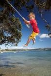 7-year-old;7-years-old;8-year-old;8-years-old;boy;boys;child;children;coast;coastal;Coromandel;Coromandel-Peninsula;eight-year-old;eight-years-old;fill-flash;fill_flash;fillflash;Flaxmill-Bay;fun;happy;joy;kid;kids;kiwi-icon;kiwi-icons;kiwiana;little-boy;little-boys;Maramaratotara-Bat;N.I.;N.Z.;New-Zealand;NI;North-Is;North-Is.;North-Island;NZ;outdoor;outside;people;person;play;playing;Pohutukawa-Tree;Pohutukawa-Trees;rope-swing;rope-swings;seven-year-old;seven-years-old;shore;summer;swing;swinging;swings;Waikato;young-boy;young-boys