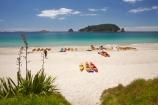 adventure;adventure-tourism;beach;beaches;boat;boats;canoe;canoeing;canoes;coast;coastal;coastline;coastlines;coasts;Coromandel;Coromandel-Peninsula;flax;foreshore;Hahei;Hahei-Beach;kayak;kayaking;kayaks;leisure;N.I.;N.Z.;New-Zealand;NI;North-Is;North-Is.;North-Island;NZ;ocean;recreation;sand;sandy;sea;sea-kayak;sea-kayaking;sea-kayaks;seas;shore;shoreline;shorelines;shores;summer;Te-Tio-Is;Te-Tio-Island;Waikato;water
