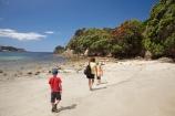beach;beaches;boy;boys;brother;brothers;child;children;coast;coastal;coastline;coastlines;coasts;Coromandel;Coromandel-Peninsula;crimson;families;family;flower;flowers;foreshore;girl;girls;Hahei;Hahei-Beach;kid;kids;little-boy;little-boys;little-girl;little-girls;metrosideros-excelsa;N.I.;N.Z.;New-Zealand;NI;North-Is;North-Is.;North-Island;NZ;ocean;people;person;plant;plants;pohutakawa;pohutakawas;pohutukawa;pohutukawa-flower;pohutukawa-flowers;pohutukawa-tree;pohutukawa-trees;pohutukawas;red;red-flowers;sand;sandy;sea;seas;shore;shoreline;shorelines;shores;sibling;siblings;sister;sisters;tree;trees;Waikato;water