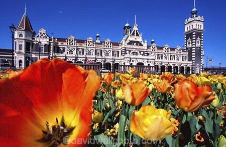 architect;architecture;basalt;clock;Dunedins-moto-secundo-curo;Dunedins-motto-secundo-curo;Flemish-Renaissance-style;floor-panels;flower;flowers;garden;gardens;George-A-Troup;George-Troop;George-Troup;Gingerbread-George;historic;historical;history;i-prosper-and-am-cautious;limestone;mosaic-tiles;motto;New-Zealand-Railways;orange;railway;railways;red-marseille-tiles;secundo-curo;station;stations;tower;towers;train-station;tulip;tulips