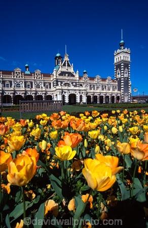 architecture;architect;Gingerbread-George;George-A-Troup;New-Zealand-Railways;Flemish-Renaissance-style;basalt;limestone;red-marseille-tiles;tower;towers;clock;Dunedins-moto-secundo-curo;Dunedins-Motto;secundo-curo;i-prosper-and-am-cautious;floor-panels;mosaic-tiles;historic;historical;history