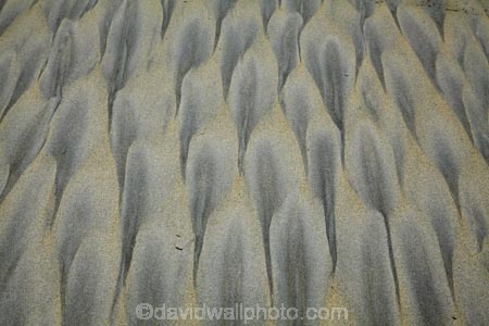 beach;beaches;coast;coastal;coastline;coastlines;coasts;Dunedin;N.Z.;New-Zealand;Otago;Otago-Peninsula;pattern;patterns;S.I.;sand;sand-pattern;sand-patterns;Sandfly-Bay;sandy;shore;shoreline;shorelines;shores;SI;South-Is;South-Island;Sth-Is;tidal-pattern;tidal-patterns