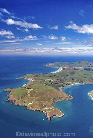Pacific;Ocean;Beach;beaches;harbor;harbors;harbour;harbours;peninsula;shore;shoreline;aerial-;aerials;Dunedin;Otago;Peninsula;Otago-Harbour;Pacific-Ocean-;Taiaroa-Head;Albatross-Colony