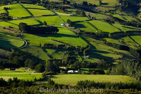 agricultural;agriculture;country;countryside;Dunedin;farm;farming;farmland;farms;field;fields;Martins-Hill;meadow;meadows;N.Z.;New-Zealand;NZ;Otago;paddock;paddocks;pasture;pastures;rural;shelter-belt;shelter-belts;shelter_belt;shelter_belts;shelterbelt;shelterbelts;South-Is;South-Island;Sth-Is;Upper-Junction;wind-break;wind-breaks;wind_break;wind_breaks;windbreak;windbreaks