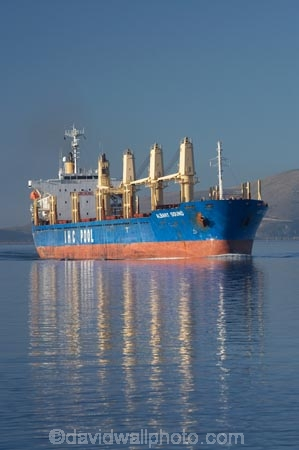Albany-Sound;Bulk-Carrier;bulk-carriers;calm;cargo;Dunedin;export;exported;exporter;exporters;exporting;exports;freight;freighted;freighter;freighters;freights;harbour;IHC-Pool;import;imported;importer;importing;imports;industrial;industry;N.Z.;New-Zealand;NZ;Otago;Otago-Harbor;Otago-Harbour;placid;quiet;reflection;reflections;S.I.;sea;serene;ship;shipping;ships;SI;smooth;South-Is.;South-Island;still;trade;tranquil;transport;transportation;water