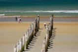 beach;beaches;coast;coastal;coastline;coastlines;coasts;Dunedin;heritage;historic;historical;history;jetties;jetty;N.Z.;New-Zealand;NZ;ocean;oceans;old;Old-Pier-Piles;Otago;pier;piers;pile;piles;S.I.;Saint-Clair-Beach;sand;sandy;sea;seas;shore;shoreline;shorelines;shores;SI;South-Is.;South-Island;St-Clair-Beach;St.-Clair-Beach;surf;walker;walkers;walking;water;waterside;wave;waves;wharf;wharfes;wharves