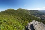 basalt-column;basalt-columns;basalt-formation;basalt-formations;columnar-jointed-basalt;Dunedin;formations;geological;geology;Mount-Cargill;Mount-Holmes;Mt-Cargill;Mt-Holmes;Mt.-Cargill;Mt.-Holmes;N.Z.;native-bush;native-forest;native-forests;New-Zealand;NZ;Otago;rock;rock-column;rock-columns;rock-formation;rock-formations;rock-outcrop;rock-outcrops;rock-tor;rock-torr;rock-torrs;rock-tors;rocks;S.I.;SI;South-Is;South-Island;stone;The-Organ-Pipes;volcanic-column;volcanic-columns;volcanic-formation;volcanic-formations;volcanic-rock