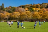 autuminal;autumn;autumn-colour;autumn-colours;autumnal;color;colors;colour;colours;deciduous;Dunedin;fall;female;fooball;game;games;girl;girls;Girls-football;girls-soccer;green;leaf;leaves;N.Z.;New-Zealand;NZ;Otago;Oval;people;person;play;playing;S.I.;season;seasonal;seasons;SI;soccer;South-Is;South-Island;sport;sports;Sth-Is;teenager;teenagers;The-Oval;tree;trees;women;yellow