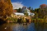 autuminal;autumn;autumn-colour;autumn-colours;autumn-tree;autumn-trees;autumnal;Botanic-Garden;Botanic-Gardens;Botanical-Garden;Botanical-Gardens;calm;city-garden;city-gardens;color;colors;colour;colours;council-garden;council-gardens;deciduous;duck-pond;duck-ponds;Dunedin;Dunedin-Botanic-Garden;Dunedin-Botanic-Gardens;Dunedin-Botanical-Garden;Dunedin-Botanical-Gardens;Dunedin-Gardens;fall;garden;gardens;glass-house;glass-houses;glasshouse;glasshouses;leaf;leaves;N.Z.;New-Zealand;North-Dunedin;NZ;Otago;placid;plant;plants;pond;ponds;quiet;reflection;reflections;S.I.;season;seasonal;seasons;serene;SI;smooth;South-Is;South-Is.;South-Island;Sth-Is;still;tranquil;tree;trees;water