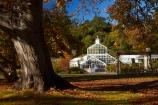 autuminal;autumn;autumn-colour;autumn-colours;autumn-tree;autumn-trees;autumnal;Botanic-Garden;Botanic-Gardens;Botanical-Garden;Botanical-Gardens;city-garden;city-gardens;color;colors;colour;colours;council-garden;council-gardens;deciduous;Dunedin;Dunedin-Botanic-Garden;Dunedin-Botanic-Gardens;Dunedin-Botanical-Garden;Dunedin-Botanical-Gardens;Dunedin-Gardens;fall;garden;gardens;glass-house;glass-houses;glasshouse;glasshouses;leaf;leaves;N.Z.;New-Zealand;North-Dunedin;NZ;oak-leaf;oak-leaves;oak-tree;oak-trees;oaks;Otago;plant;plants;S.I.;season;seasonal;seasons;SI;South-Is;South-Is.;South-Island;Sth-Is;tree;trees