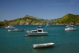 boat;boats;coast;coastal;coastline;coastlines;coasts;cruise;cruises;Dunedin;Goat-Is;Goat-Island;harbor;harbors;harbour;harbours;Kamau-Taurua;launch;launches;moor;moored;moored-boats;mooring;N.Z.;New-Zealand;NZ;ocean;oceans;Otago;Otago-Harbour;Otago-Peninsula;Port-Chalmers;Pt-Chalmers;Quarantine-Is;Quarantine-Island;S.I.;sea;shore;shoreline;shorelines;shores;SI;South-Is;South-Is.;South-Island;Sth-Is;water;yacht;yachts