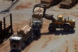 articulated-lorries;articulated-lorry;articulated-truck;articulated-trucks;bulk;dock;docks;Dunedin;export;export-logs;exporting;exports;forestry;forestry-industry;front_end-laoder;front_end-loaders;heavy-haulage;import;importing;industrial;industry;Juggernaut;Juggernauts;loader;loaders;log;log-hauler;log-haulers;log-loader;log-loaders;log-lorries;log-lorry;log-truck;log-trucks;logging;logging-equipment;logging-lorries;logging-lorry;logging-truck;logging-trucks;logs;lorries;lorry;lumber;N.Z.;New-Zealand;NZ;Otago;Otago-Harbour;Otago-port;pier;piers;pine;pine-tree;pine-trees;pines;pinus-radiata;port;Port-Chalmers;Port-of-Otago;Port-Otago;ports;Pt-Chalmers;quay;quays;rig;rigs;S.I.;semi;semitrailer;semitrailers;SI;South-Is;South-Is.;South-Island;Sth-Is;stockpile;stockpiles;timber;timber-industry;tractor-trailer;tractor-trailers;trade;transport;transportation;tree;tree-trunk;tree-trunks;trees;truck;trucks;unloading;waterside;wharf;wharfes;wharves;wood