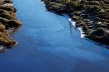 bad-water-quality;brook;brooks;calm;cow-effluent;creek;creeks;dairy-effluent;dairy-pollution;dairy-runoff;discharge;drain;drainage-channel;drainage-channels;drainage-ditch;drainage-ditches;drains;Dunedin;emission;emissions;emit;environment;environmental;farm-runoff;global-warming;N.Z.;New-Zealand;NZ;Otago;placid;pollute;polluted;polluted-water;polluting;pollution;poor-water-quality;quiet;reflected;reflection;reflections;riparian-area;riparian-areas;riparian-buffer;riparian-buffer-zone;riparian-buffer-zones;riparian-buffers;riparian-strip;riparian-strips;riparian-zone;riparian-zones;runoff;S.I.;serene;SI;smooth;South-Is;South-Island;still;stream;streams;Taieri-Plain;Taieri-Plains;tranquil;water;water-pollution;water-polutants;water-quality;watercourse;watercouses;watershed;watersheds;waterway;waterways
