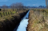 agricultural;agriculture;brook;brooks;calm;country;countryside;creek;creeks;drain;drainage-channel;drainage-channels;drainage-ditch;drainage-ditches;drains;Dunedin;farm;farming;farmland;farms;fenced-riparian-strip;field;fields;meadow;meadows;N.Z.;New-Zealand;NZ;Otago;paddock;paddocks;pasture;pastures;placid;quiet;reflected;reflection;reflections;riparian-area;riparian-areas;riparian-buffer;riparian-buffer-zone;riparian-buffer-zones;riparian-buffers;riparian-strip;riparian-strips;riparian-zone;riparian-zones;rural;S.I.;serene;SI;smooth;South-Is;South-Island;still;stream;streams;Taieri-Plain;Taieri-Plains;tranquil;water;watercourse;watercouses;waterway;waterways