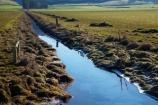 agricultural;agriculture;brook;brooks;calm;country;countryside;creek;creeks;drain;drainage-channel;drainage-channels;drainage-ditch;drainage-ditches;drains;Dunedin;farm;farming;farmland;farms;fenced-riparian-strip;field;fields;meadow;meadows;N.Z.;New-Zealand;NZ;Otago;paddock;paddocks;partly-fenced-riparian-strip;pasture;pastures;placid;quiet;reflected;reflection;reflections;riparian-area;riparian-areas;riparian-buffer;riparian-buffer-zone;riparian-buffer-zones;riparian-buffers;riparian-strip;riparian-strips;riparian-zone;riparian-zones;rural;S.I.;serene;SI;smooth;South-Is;South-Island;still;stream;streams;Taieri-Plain;Taieri-Plains;tranquil;unfenced-riparian-strip;water;watercourse;watercouses;waterway;waterways