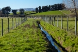 agricultural;agriculture;brook;brooks;country;countryside;creek;creeks;deer-fence;deer-fencing;drain;drainage-channel;drainage-channels;drainage-ditch;drainage-ditches;drains;Dunedin;farm;farming;farmland;farms;field;fields;meadow;meadows;N.Z.;New-Zealand;NZ;Otago;paddock;paddocks;pasture;pastures;riparian-area;riparian-areas;riparian-buffer;riparian-buffer-zone;riparian-buffer-zones;riparian-buffers;riparian-strip;riparian-strips;riparian-zone;riparian-zones;rural;S.I.;SI;South-Is;South-Island;stream;streams;Taieri-Plain;Taieri-Plains;water;watercourse;watercouses;waterway;waterways