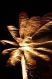 carnival;carnivals;dark;Dunedin;evening;event;events;explosion;explosions;festival;festivals;fire_works;fireworks;fireworks-display;light;lights;lmid-winter-carnival;mid-winter-carnival;mid-winter-festival;mid_winter-carniva;Mid_Winter-Carnival;Mid_winter-festival;midwinter-carnival;N.Z.;New-Zealand;night;night-time;night_time;NZ;old;Otago;palm;palm-tree;palm-trees;palms;public-fireworks-display;S.I.;SI;skyrocket;skyrockets;South-Is;South-Is.;South-Island;Sth-Is;the-Octagon;tradition;traditional;winter;winter-carnival;winter-festival