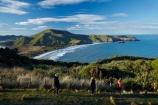 Allans-Beach;Allans-Beach;ater;coast;coastal;coastline;coastlines;coasts;Dunedin;hiker;hikers;Mount-Charles;Mt-Charles;N.Z.;New-Zealand;ocean;oceans;Otago;Otago-Peninsula;Pacific-Ocean;people;person;S.I.;Sandymount;sea;seas;shore;shoreline;shorelines;shores;SI;South-Is;South-Island;Sth-Is;The-Chasm;tourist;tourists;walker;walkers;walking-track;walking-tracks