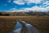 agricultural;agriculture;country;countryside;Dunedin;farm;farm-track;farm-tracks;farming;farmland;farms;field;fields;meadow;meadows;Middlemarch;N.Z.;New-Zealand;NZ;Otago;paddock;paddocks;pasture;pastures;puddle;puddles;range;ranges;Rock-amp;-Pillar-Range;Rock-and-Pillar-Range;rural;S.I.;season;seasons;SI;snow;snow-capped;snow_capped;snowcapped;snowy;South-Is;South-Is.;South-Island;Sth-Is;Strath-Taieri;Sutton;winter