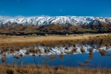 agricultural;agriculture;calm;country;countryside;Dunedin;farm;farm-pond;farm-ponds;farming;farmland;farms;fence;fence-line;fence-lines;fence_line;fence_lines;fenceline;fencelines;fences;field;fields;meadow;meadows;Middlemarch;N.Z.;New-Zealand;NZ;Otago;paddock;paddocks;pasture;pastures;placid;pond;ponds;quiet;range;ranges;reeds;reflected;reflection;reflections;Rock-amp;-Pillar-Range;Rock-and-Pillar-Range;rural;S.I.;season;seasons;serene;SI;smooth;snow-capped;snow_capped;snowcapped;snowy;South-Is;South-Is.;South-Island;Sth-Is;still;Strath-Taieri;Sutton;tranquil;water;winter