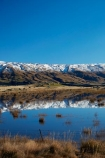 agricultural;agriculture;calm;country;countryside;Dunedin;farm;farm-pond;farm-ponds;farming;farmland;farms;fence;fence-line;fence-lines;fence_line;fence_lines;fenceline;fencelines;fences;field;fields;meadow;meadows;Middlemarch;N.Z.;New-Zealand;NZ;Otago;paddock;paddocks;pasture;pastures;placid;pond;ponds;quiet;range;ranges;reflected;reflection;reflections;Rock-amp;-Pillar-Range;Rock-and-Pillar-Range;rural;S.I.;season;seasons;serene;SI;smooth;snow-capped;snow_capped;snowcapped;snowy;South-Is;South-Is.;South-Island;Sth-Is;still;Strath-Taieri;Sutton;tranquil;water;winter