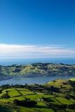 agricultural;agriculture;country;countryside;Dunedin;farm;farming;farmland;farms;field;fields;Martins-Hill;meadow;meadows;N.Z.;New-Zealand;NZ;Otago;Otago-Peninsula;paddock;paddocks;pasture;pastures;rural;shelter-belt;shelter-belts;shelter_belt;shelter_belts;shelterbelt;shelterbelts;South-Is;South-Island;Sth-Is;Upper-Junction;wind-break;wind-breaks;wind_break;wind_breaks;windbreak;windbreaks
