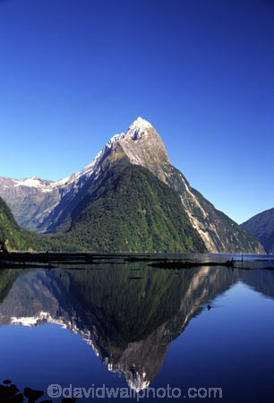 beautiful;beauty;bluff;bluffs;calm;calmness;cliff;cliffs;coast;coastal;coastline;fiord;fiordland;fiords;fjord;fjords;majestic;middle-earth;milford-sound;mitre-peak;mountain;mountains;natural;nature;new-zealand;peak;peaks;reflection;reflections;scene;scenic;sea;snow;snowy;sounds;south-west;southland;still;stillness;summit;summits;te-wahipounamu-south_west-new-zealand-world-hertitage-area;water