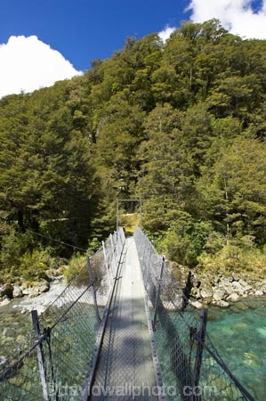 beech;bridge;bridges;brook;brooks;bubbling;bush;clean;clean-water;clear;clear-water;creek;creeks;fern;ferns;fiordland;Fiordland-N.P;Fiordland-National-Park;Fiordland-NP;flora;flow;foot-bridge;foot-bridges;footbridge;footbridges;forest;forestry;forests;green;hike;hikes;hiking;hiking-track;hiking-tracks;Hollyford-River;Hollyford-Valley;island;kb1a5931;lush;majestic;middle-earth;N.Z.;national-park;National-parks;native-bush;native-forest;natural;nature;new;new-zealand;NZ;outdoor;outdoors;pedestrian-bridge;pedestrian-bridges;pristine;rain-forest;rain-forests;rain_forest;rain_forests;rainforest;rainsforests;river;rivers;S.I.;scene;scenic;SI;south;South-Is.;South-Island;south-west;south-west-new-zealand-world-her;Southland;stream;streams;suspension-bridge;suspension-bridges;swing-bridge;swing-bridges;te-wahipounamu;te-wahipounamu-south_west-new;te-wahipounamu-south_west-new-zealand;track;Track-to-Lake-Marian;tracks;tramp;tramping;tramping-tack;tramping-tacks;tramps;trek;treking;trekking;undergrowth;verdant;walk;walking;walking-track;walking-tracks;walks;water;watercourse;wet;wire-bridge;wire-bridges;world-heritage-area;World-Heritage-Site;zealand