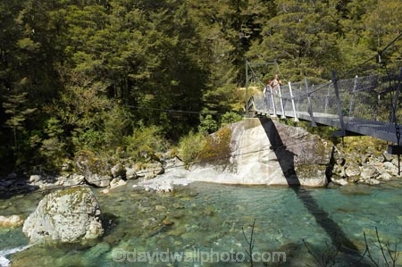 beech;bridge;bridges;brook;brooks;bubbling;bush;clean;clean-water;clear;clear-water;creek;creeks;fern;ferns;fiordland;Fiordland-N.P;Fiordland-National-Park;Fiordland-NP;flora;flow;foot-bridge;foot-bridges;footbridge;footbridges;forest;forestry;forests;green;hike;hiker;hikers;hikes;hiking;hiking-track;hiking-tracks;Hollyford-River;Hollyford-Valley;island;kb1a5940;lush;majestic;middle-earth;N.Z.;national-park;National-parks;native-bush;native-forest;natural;nature;new;new-zealand;NZ;outdoor;outdoors;pedestrian-bridge;pedestrian-bridges;pristine;rain-forest;rain-forests;rain_forest;rain_forests;rainforest;rainsforests;river;rivers;S.I.;scene;scenic;SI;south;South-Is.;South-Island;south-west;south-west-new-zealand-world-her;Southland;stream;streams;suspension-bridge;suspension-bridges;swing-bridge;swing-bridges;te-wahipounamu;te-wahipounamu-south_west-new;te-wahipounamu-south_west-new-zealand;track;Track-to-Lake-Marian;tracks;tramp;tramper;trampers;tramping;tramping-tack;tramping-tacks;tramps;trek;treker;trekers;treking;trekker;trekkers;trekking;undergrowth;verdant;walk;walker;walkers;walking;walking-track;walking-tracks;walks;water;watercourse;wet;wire-bridge;wire-bridges;world-heritage-area;World-Heritage-Site;zealand