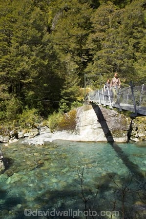 beech;bridge;bridges;brook;brooks;bubbling;bush;clean;clean-water;clear;clear-water;creek;creeks;fern;ferns;fiordland;Fiordland-N.P;Fiordland-National-Park;Fiordland-NP;flora;flow;foot-bridge;foot-bridges;footbridge;footbridges;forest;forestry;forests;green;hike;hiker;hikers;hikes;hiking;hiking-track;hiking-tracks;Hollyford-River;Hollyford-Valley;island;kb1a5941;lush;majestic;middle-earth;N.Z.;national-park;National-parks;native-bush;native-forest;natural;nature;new;new-zealand;NZ;outdoor;outdoors;pedestrian-bridge;pedestrian-bridges;pristine;rain-forest;rain-forests;rain_forest;rain_forests;rainforest;rainsforests;river;rivers;S.I.;scene;scenic;SI;south;South-Is.;South-Island;south-west;south-west-new-zealand-world-her;Southland;stream;streams;suspension-bridge;suspension-bridges;swing-bridge;swing-bridges;te-wahipounamu;te-wahipounamu-south_west-new;te-wahipounamu-south_west-new-zealand;track;Track-to-Lake-Marian;tracks;tramp;tramper;trampers;tramping;tramping-tack;tramping-tacks;tramps;trek;treker;trekers;treking;trekker;trekkers;trekking;undergrowth;verdant;walk;walker;walkers;walking;walking-track;walking-tracks;walks;water;watercourse;wet;wire-bridge;wire-bridges;world-heritage-area;World-Heritage-Site;zealand