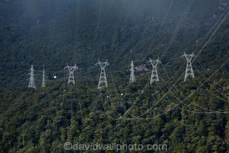 bush;electricity;electricity-distribution;electricity-line;electricity-lines;electricity-pylon;electricity-pylons;electricity-transmission;energy;Fiordland;Fiordland-N.P.;Fiordland-National-Park;Fiordland-NP;forest;forests;high-tension-lines;industrial;Lake-Manapouri;line;lines;Manapouri;Manapouri-Power-Station;N.Z.;national-grid;national-park;national-parks;native-bush;native-forest;native-forests;native-tree;native-trees;native-woods;natural;nature;New-Zealand;NZ;pole;poles;post;posts;power;power-cable;power-cables;power-distribution;power-line;power-lines;power-pole;power-poles;power-pylon;power-pylons;pylon;pylon-line;pylon-lines;pylons;S.I.;SI;South-IS;South-Island;Southland;Sth-Is;Te-Waipounamu;Te-Waipounamu-World-Heritage-Site;tower;towers;transmission-line;transmission-lines;tree;trees;UN-world-heritage-area;UN-world-heritage-site;UNESCO-World-Heritage-area;UNESCO-World-Heritage-Site;united-nations-world-heritage-area;united-nations-world-heritage-site;wire;wires;wood;woods;world-heritage;world-heritage-area;world-heritage-areas;World-Heritage-Park;World-Heritage-site;World-Heritage-Sites