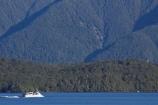beautiful;beauty;Beech-Forest;boat;boats;bush;cruise;cruises;endemic;fiordland;Fiordland-N.P;fiordland-national-park;Fiordland-NP;forest;forests;green;holiday;holidaying;Holidays;lake;Lake-Te-Anau;lakes;launch;launches;n.z.;national-park;National-parks;native-bush;natural;nature;new-zealand;Nothofagus;nz;rain-forest;rain-forests;rain_forest;rain_forests;rainforest;rainforests;S.I.;scene;scenic;SI;South-Island;South-West-New-Zealand-World-Her;southern-beeches;Southland;te-anau;Te-Anau-Glow-Worm-Caves;te-wahipounamu;te-wahipounamu-south_west-new;tour-boat;tour-boats;tourism;tourist;tourist-boat;tourist-boats;tourists;travel;traveler;traveling;traveller;travelling;trees;Vacation;Vacationers;vacationing;Vacations;water;world-heirtage-site;world-heritage-area