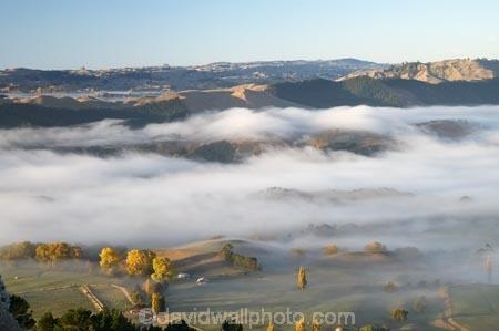 agricultural;agriculture;autuminal;autumn;autumn-colour;autumn-colours;autumnal;break-of-day;color;colors;colour;colours;country;countryside;dawn;dawning;daybreak;deciduous;fall;farm;farming;farmland;farms;field;fields;first-light;fog;foggy;fogs;Hawkes-Bay;meadow;meadows;mist;mists;misty;morning;N.I.;N.Z.;New-Zealand;NI;North-Island;NZ;paddock;paddocks;pasture;pastures;rural;season;seasonal;seasons;Te-Mata-Peak;tree;trees;Tukituki-River-Valley;view;views