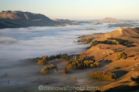 agricultural;agriculture;break-of-day;country;countryside;dawn;dawning;daybreak;farm;farming;farmland;farms;field;fields;first-light;fog;foggy;fogs;Hawkes-Bay;meadow;meadows;mist;mists;misty;morning;N.I.;N.Z.;New-Zealand;NI;North-Island;NZ;paddock;paddocks;pasture;pastures;rural;Te-Mata-Peak;Tukituki-River-Valley;view;views
