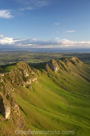agricultural;agriculture;country;countryside;farm;farming;farmland;farms;field;fields;Hawkes-Bay;Hawkes-Bay;meadow;meadows;N.I.;N.Z.;New-Zealand;NI;North-Is;North-Is.;North-Island;NZ;paddock;paddocks;pasture;pastures;rural;season;seasonal;seasons;spring;springtime;Te-Mata-Peak;Te-Mata-Pk;Tukituki-River-Valley