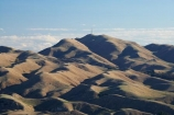 agricultural;agriculture;country;countryside;farm;farming;farmland;farms;field;fields;Hawkes-Bay;hill;hills;Kohinurakau-Range;meadow;meadows;Mount-Erin;Mt-Erin;Mt.-Erin;N.I.;N.Z.;New-Zealand;NI;North-Island;NZ;paddock;paddocks;pasture;pastures;rural;Te-Mata-Peak