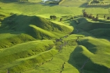agricultural;agriculture;country;countryside;farm;farming;farmland;farms;field;fields;grass;green;Hawkes-Bay;Hawkes-Bay;lush;meadow;meadows;N.I.;N.Z.;New-Zealand;NI;North-Is;North-Is.;North-Island;NZ;paddock;paddocks;pasture;pastures;rural;season;seasonal;seasons;spring;springtime;Tukituki-River-Valley;verdant