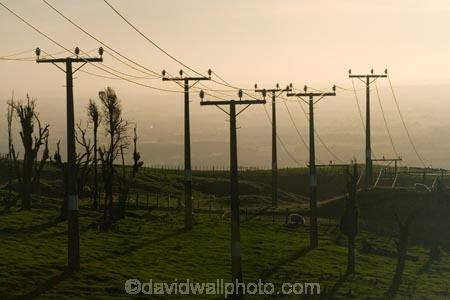 line;lines;Lower-North-Island;Manawatu;N.I.;N.Z.;New-Zealand;NI;North-Island;NZ;Palmerston-North;pole;poles;post;posts;power-line;power-lines;power-pole;Power-Poles;Tararua;Tararua-Ranges;telegraph-line;telegraph-lines;telegraph-pole;telegraph-poles;wire;wires