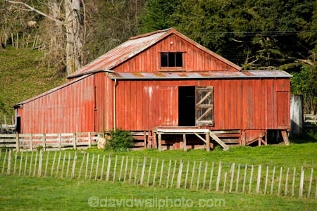 agricultural;agriculture;country;countryside;farm;Farm-Building;Farm-Buildings;Farm-Shed;Farm-Sheds;farming;farmland;farms;fence;fenceline;fencelines;fences;field;fields;Kawhatau-Valley;meadow;meadows;N.I.;N.Z.;New-Zealand;NI;North-Island;NZ;paddock;paddocks;pasture;pastures;Rangitikei;rural;Shearing-Shed;Shearing-Sheds;Sheep-Shed;Sheep-Sheds;Wool-Shed;Wool-Sheds