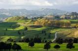 agricultural;agriculture;autuminal;autumn;autumn-colour;autumn-colours;autumnal;color;colors;colour;colours;country;countryside;deciduous;fall;farm;farming;farmland;farms;field;fields;Kawhatau-Valley;leaf;leaves;meadow;meadows;N.I.;N.Z.;New-Zealand;NI;North-Island;NZ;paddock;paddocks;pasture;pastures;Rangitikei;rural;season;seasonal;seasons;tree;trees;valley;valleys
