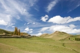 agricultural;agriculture;autuminal;autumn;autumn-colour;autumn-colours;autumnal;Central-North-Island;country;countryside;Erewhon-Station;fall;farm;farming;farmland;farms;field;fields;meadow;meadows;N.I.;N.Z.;Napier-_-Taihape-Road;New-Zealand;NI;North-Island;NZ;paddock;paddocks;pasture;pastures;Rangitikei-District;rural;season;seasonal;seasons