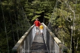 beautiful;beauty;Beech-Forest;boy;boys;bridge;bridges;bush;child;children;endemic;families;family;foot-bridge;foot-bridges;footbridge;footbridges;forest;forests;green;hiking-track;hiking-tracks;kid;kids;little-boy;little-boys;Marlborough;model-release;model-released;mother;mothers;N.Z.;native;native-bush;natives;natural;nature;New-Zealand;Nothofagus;NZ;pedestrian-bridge;pedestrian-bridges;Pelorus-Bridge;people;person;Rai-River;S.I.;scene;scenic;SI;small-boy;small-boys;son;South-Is.;South-Island;southern-beeches;suspension-bridge;suspension-bridges;swing-bridge;swing-bridges;track;tracks;tree;trees;walking-track;walking-tracks;wire-bridge;wire-bridges;wood;woods