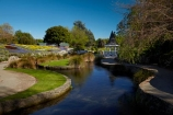 Blenheim;bloom;blooming;blooms;blossom;blossoming;blossoms;Botanic-Garden;Botanic-Gardens;Botanical-Garden;Botanical-Gardens;floral;flower;flower-beds;flower-garden;flower-gardens;flowers;fresh;grow;growth;Marlborough;N.Z.;New-Zealand;NZ;park;parks;Pollard-Park;pond;ponds;renew;S.I.;season;seasonal;seasons;SI;South-Is;South-Is.;South-Island;spring;spring-time;spring_time;springtime;Sth-Is;tree;trees