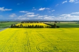 aerial;Aerial-drone;Aerial-drones;aerial-image;aerial-images;aerial-photo;aerial-photograph;aerial-photographs;aerial-photography;aerial-photos;aerial-view;aerial-views;aerials;agricultural;agriculture;canolla;canolla-field;canolla-fields;Canterbury;country;countryside;crop;crops;Drone;Drones;farm;farming;farmland;farms;field;fields;flower;flowers;horticulture;meadow;meadows;Methven;Mid-Canterbury;Mount-Hutt;mountain;mountains;Mt-Hutt;N.Z.;New-Zealand;NZ;paddock;paddocks;pasture;pastures;Quadcopter-aerial;Quadcopters-aerials;rapeseed;rapeseed-field;rural;S.I.;season;seasonal;seasons;SI;South-Is;South-Island;southern-alps;spring;spring-time;spring_time;springtime;Sth-Is;tire-tracks;tractor-tracks;tyre-tracks;U.A.V.-aerial;UAV-aerials;wheel-tracks;yellow;yellow-flower;yellow-flowers