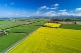 aerial;Aerial-drone;Aerial-drones;aerial-image;aerial-images;aerial-photo;aerial-photograph;aerial-photographs;aerial-photography;aerial-photos;aerial-view;aerial-views;aerials;agricultural;agriculture;canolla;canolla-field;canolla-fields;Canterbury;country;countryside;crop;crops;Drone;Drones;farm;farming;farmland;farms;field;fields;flower;flowers;horticulture;meadow;meadows;Methven;Methven-Chertsey-Rd;Methven-Chertsey-Road;Methven_Chertsey-Road;Mid-Canterbury;Mount-Hutt;mountain;mountains;Mt-Hutt;N.Z.;New-Zealand;NZ;paddock;paddocks;pasture;pastures;Quadcopter-aerial;Quadcopters-aerials;rapeseed;rapeseed-field;rural;S.I.;season;seasonal;seasons;SI;South-Is;South-Island;southern-alps;spring;spring-time;spring_time;springtime;Sth-Is;tire-tracks;tractor-tracks;tyre-tracks;U.A.V.-aerial;UAV-aerials;wheel-tracks;yellow;yellow-flower;yellow-flowers