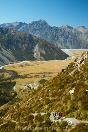 alpine;Aoraki-Mount-Cook-N.P.;Aoraki-Mount-Cook-National-Park;Aoraki-Mount-Cook-NP;Aoraki-N.P.;Aoraki-National-Park;Aoraki-NP;camp;camp-ground;camp-site;campground;campsite;Canterbury;hiker;hikers;hiking-path;hiking-paths;hiking-trail;hiking-trails;M.R.;Mackenzie-Country;Mackenzie-District;Mackenzie-Region;model-release;model-released;Mount-Cook-N.P.;Mount-Cook-National-Park;Mount-Cook-NP;Mount-Cook-Village;mountain;mountains;MR;Mt-Cook-N.P.;Mt-Cook-National-park;Mt-Cook-NP;Mt-Cook-Village;N.Z.;national-parks;New-Zealand;NZ;path;paths;pathway;pathways;people;person;route;routes;S.I.;Sealy-Range;South-Is;South-Island;Southern-Alps;Sth-Is;track;tracks;trail;trails;tramper;trampers;tramping-trail;tramping-trails;view;walker;walkers;walking-path;walking-paths;walking-trail;walking-trails;walkway;walkways;White-Horse-Hill;White-Horse-Hill-Camp-Ground;White-Horse-Hill-Camp-Site;White-Horse-Hill-Camping-Area
