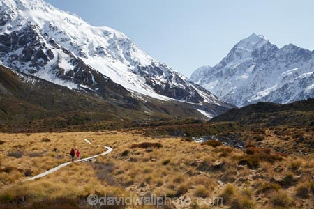 alp;alpine;alps;altitude;Aoraki;Aoraki-Mt-Cook;Aoraki-Mt-Cook-N.P.;Aoraki-Mt-Cook-National-Park;Aoraki-Mt-Cook-NP;Aoraki-Mount-Cook;Aoraki-Mt-Cook;Aoraki-Mt-Cook-N.P.;Aoraki-Mt-Cook-National-Park;Aoraki-Mt-Cook-NP;backpacker;backpackers;Canterbury;glacial;glacier;glaciers;high-altitude;hike;hiker;hikers;hiking;hiking-track;hiking-tracks;Hooker-Valley;Mackenzie-Country;Mackenzie-District;main-divide;mount;Mount-Cook;mountain;mountain-peak;mountainous;mountains;mountainside;mt;Mt-Cook;Mt-Cook-N.P.;Mt-Cook-National-Park;Mt-Cook-NP;mt.;Mt.-Cook;N.Z.;New-Zealand;NZ;peak;peaks;range;ranges;S.I.;SI;snow;snow-capped;snow_capped;snowcapped;snowy;South-Canterbury;South-Is.;South-Island;southern-alps;summit;summits;tramp;tramper;trampers;tramping;tramping-tack;tramping-tracks;trek;treker;trekers;treking;trekker;trekkers;trekking;walk;walker;walkers;walking;walking-track;walking-tracks